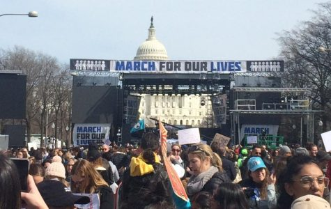 March For Our Lives Slideshow
