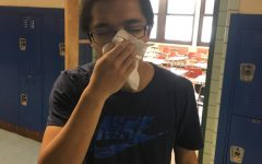 The pollen plague