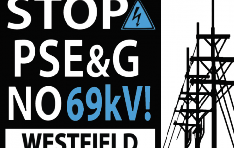 PSE&G proposes controversial power lines