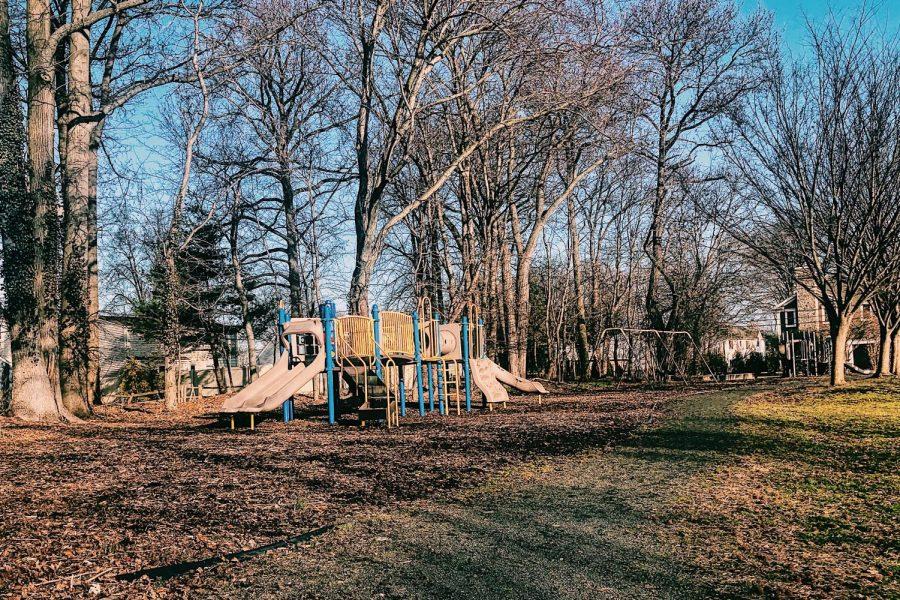 Sycamore Field