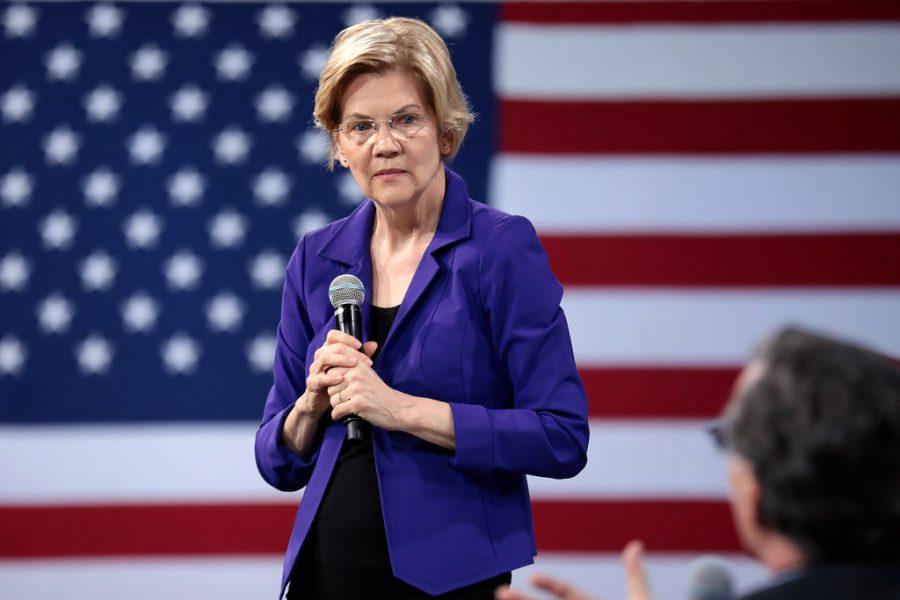 Former Democratic Candidate Elizabeth Warren