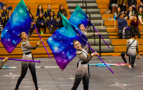 What is winter guard?
