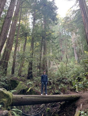 Tommy Davis at Muir Woods, a National Monument in California he hopes to revisit during his gap year