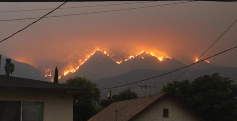 Forest Fire in Monrovia, California.