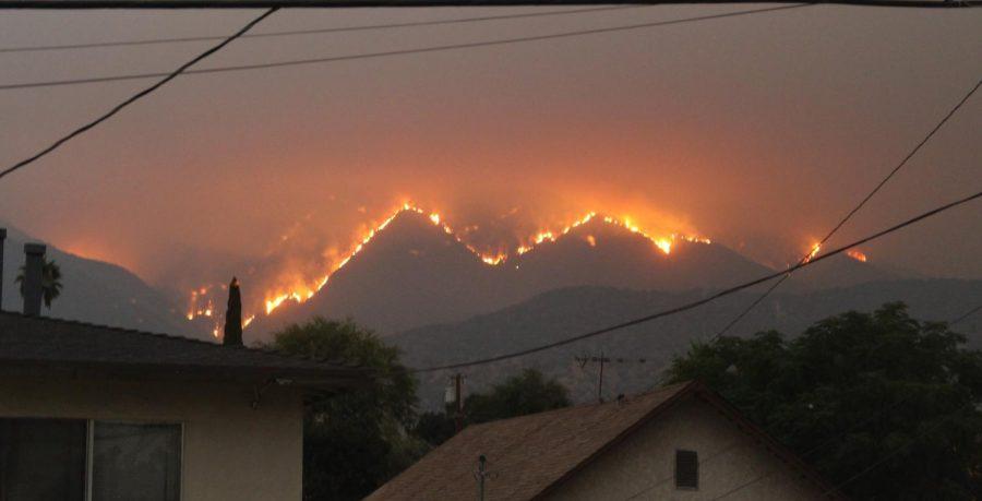 Forest Fire in Monrovia, California.