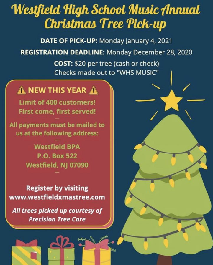 Christmas Tree Pick-Up Flyer